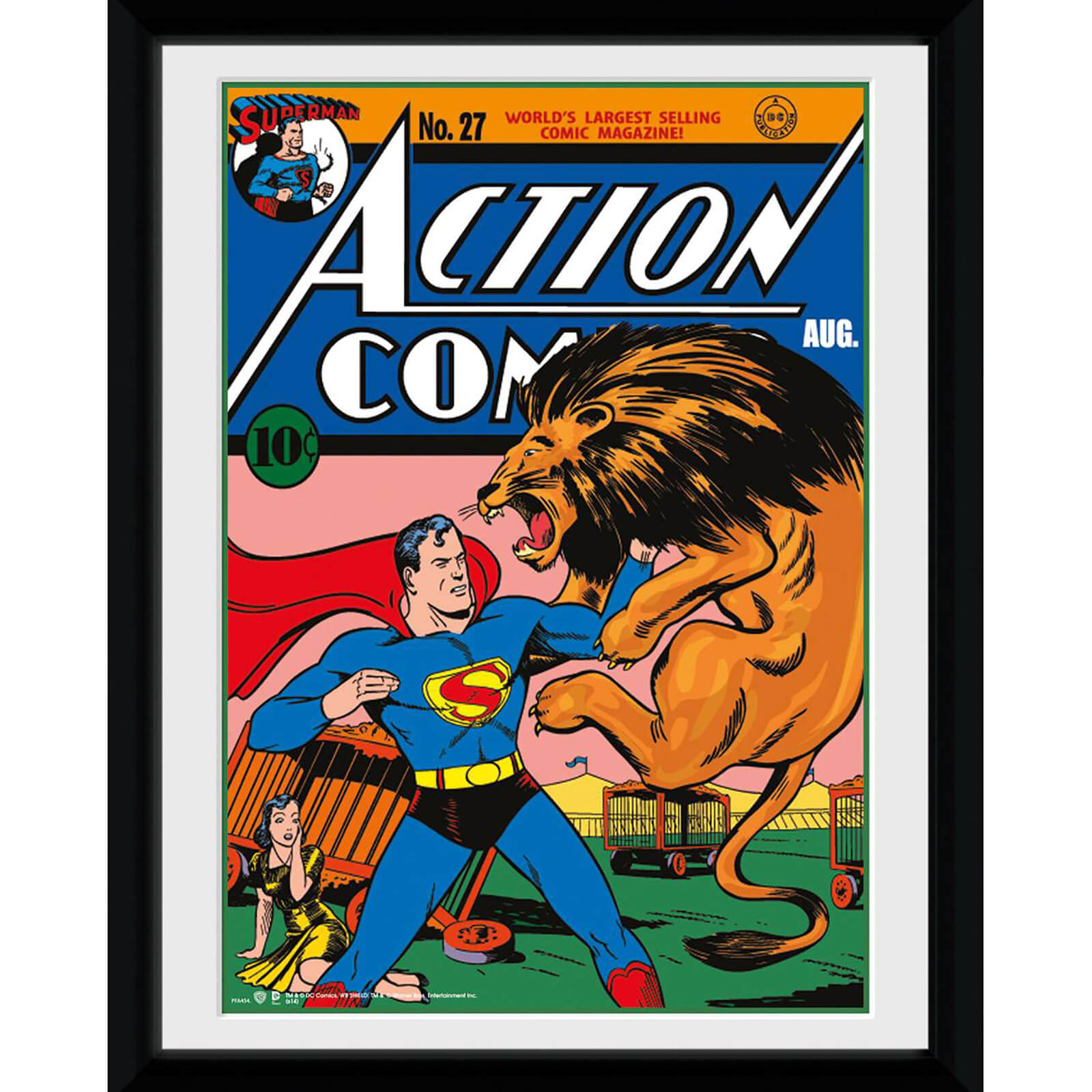 DC Comics Superman Lion - 8x6 Framed Photographic
