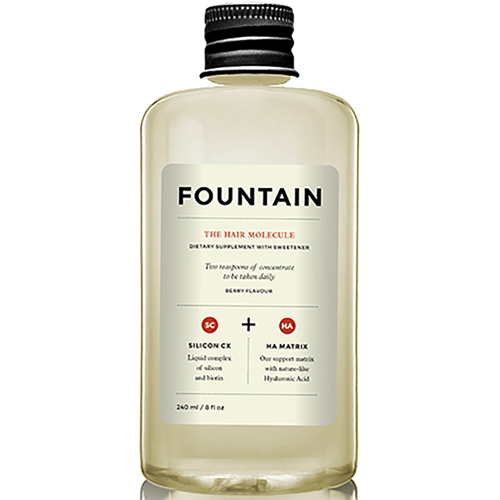 FOUNTAIN The Hair Molecule (240ml)