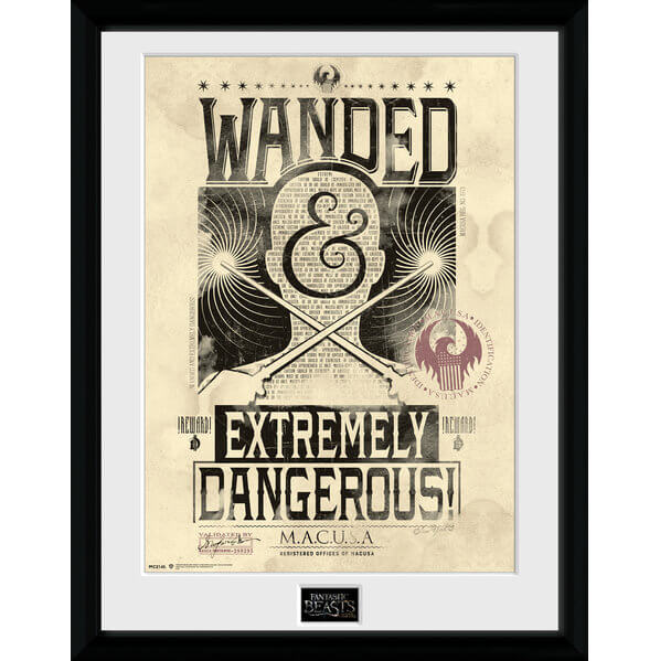 "Fantastic Beasts Wanted Framed Album Cover - 12"""" x 12"""
