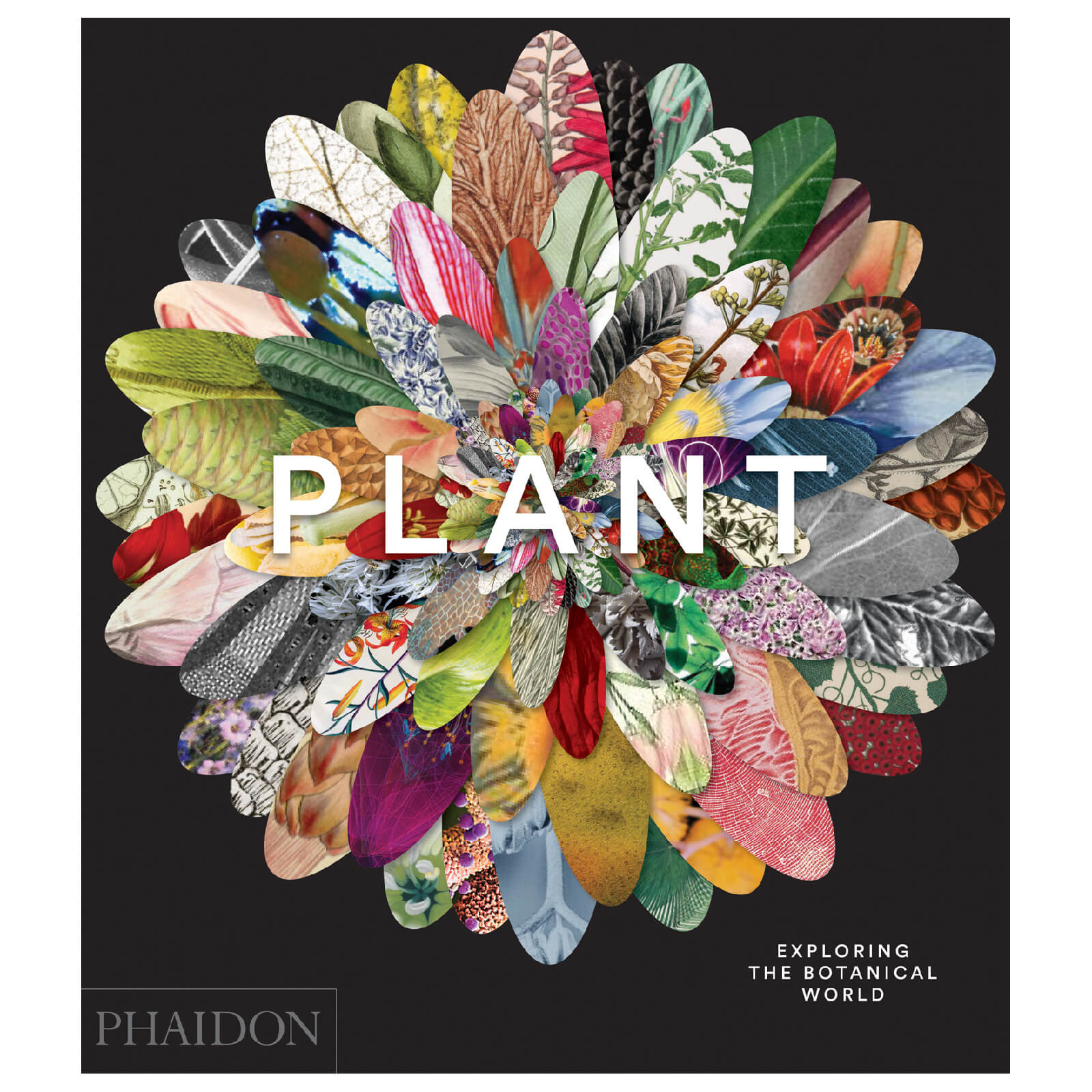 Phaidon Books: Plant: Exploring the Botanical World