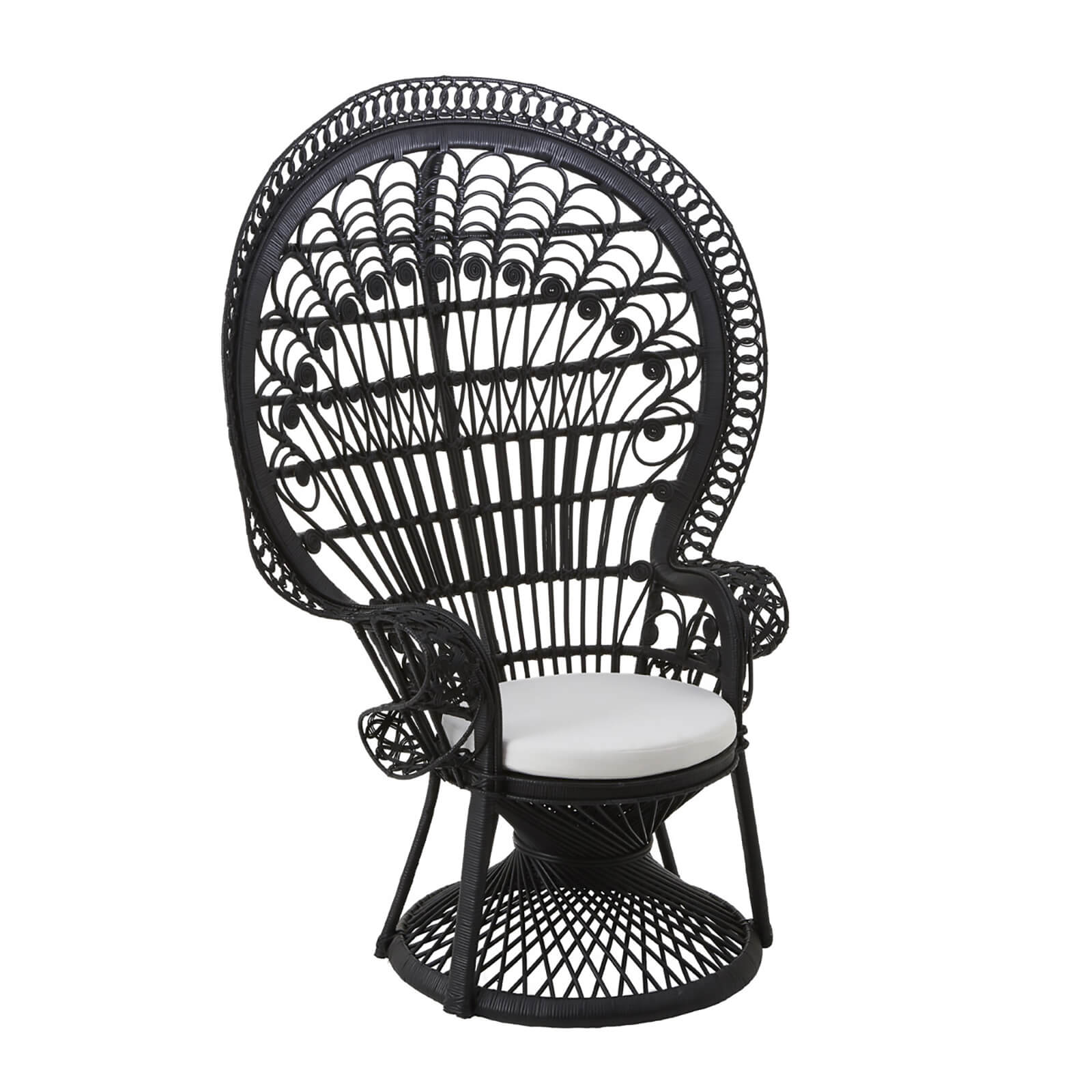 Fifty Five South Woodstock Peacock Rattan Chair - Black
