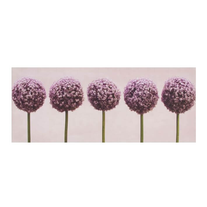 Art For The Home Row of Alliums Floral Printed Canvas Wall Art