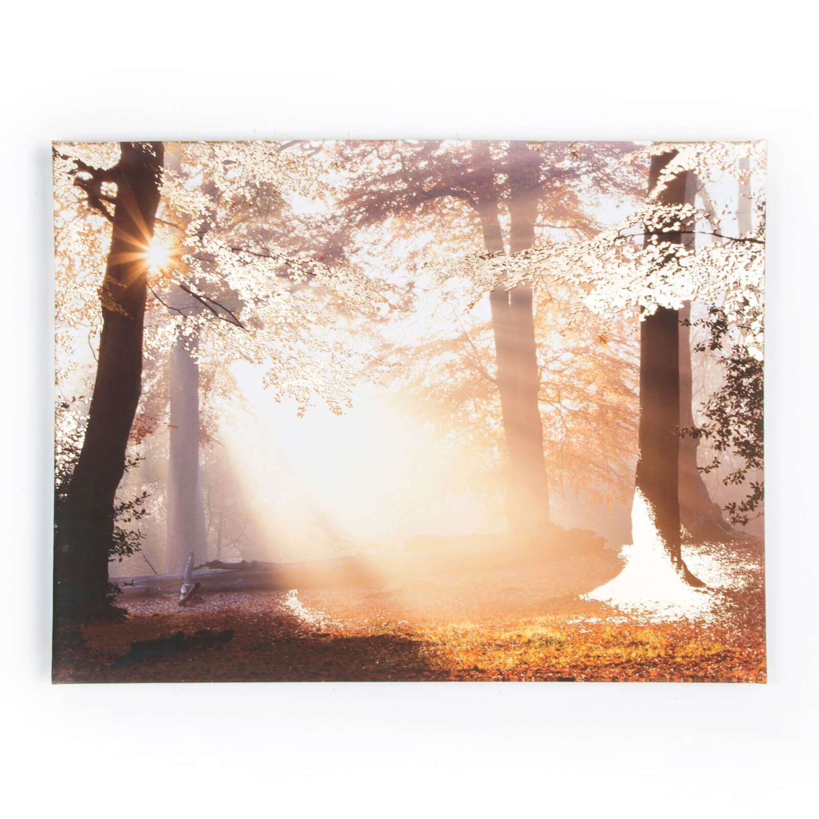 Art For The Home Metallic Forest Printed Canvas Wall Art