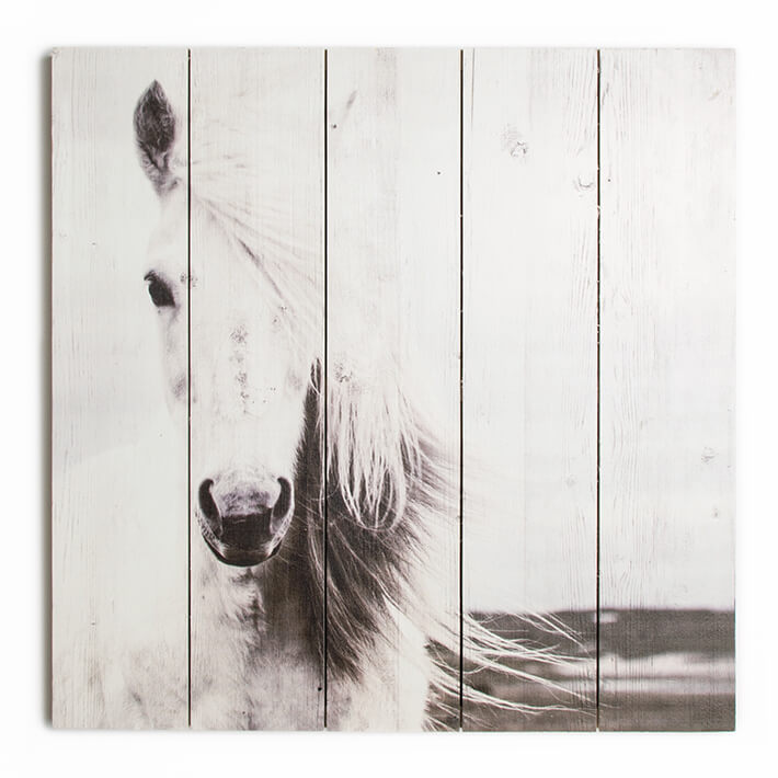 Art For The Home Neutral Animal Horse Wall Art Print On Wood