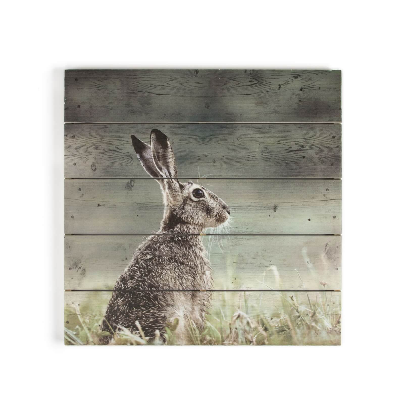 Art For The Home Hare Print On Wood Wall Art