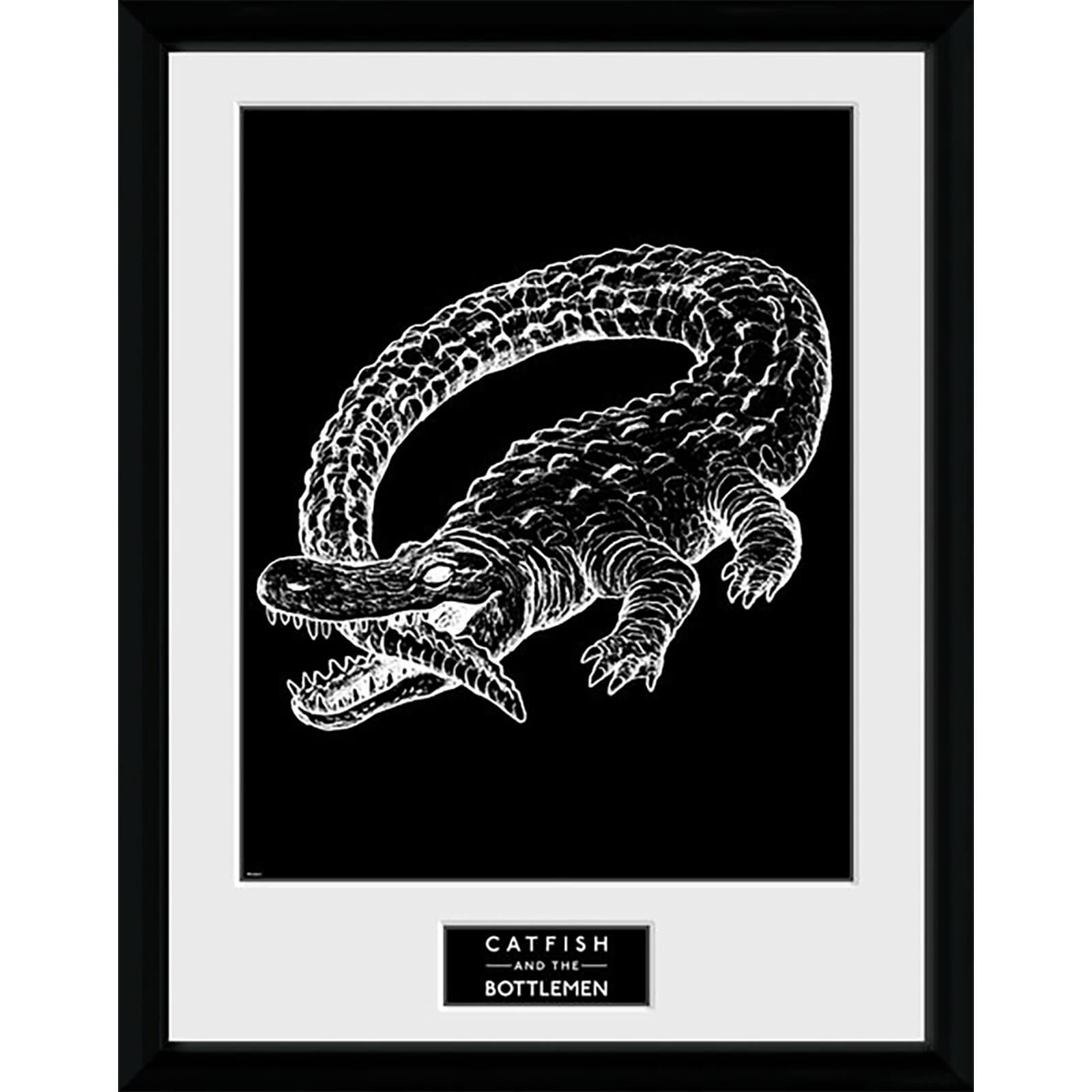 Catfish and the Bottlemen Alligator - 16 x 12 Inches Framed Photograph