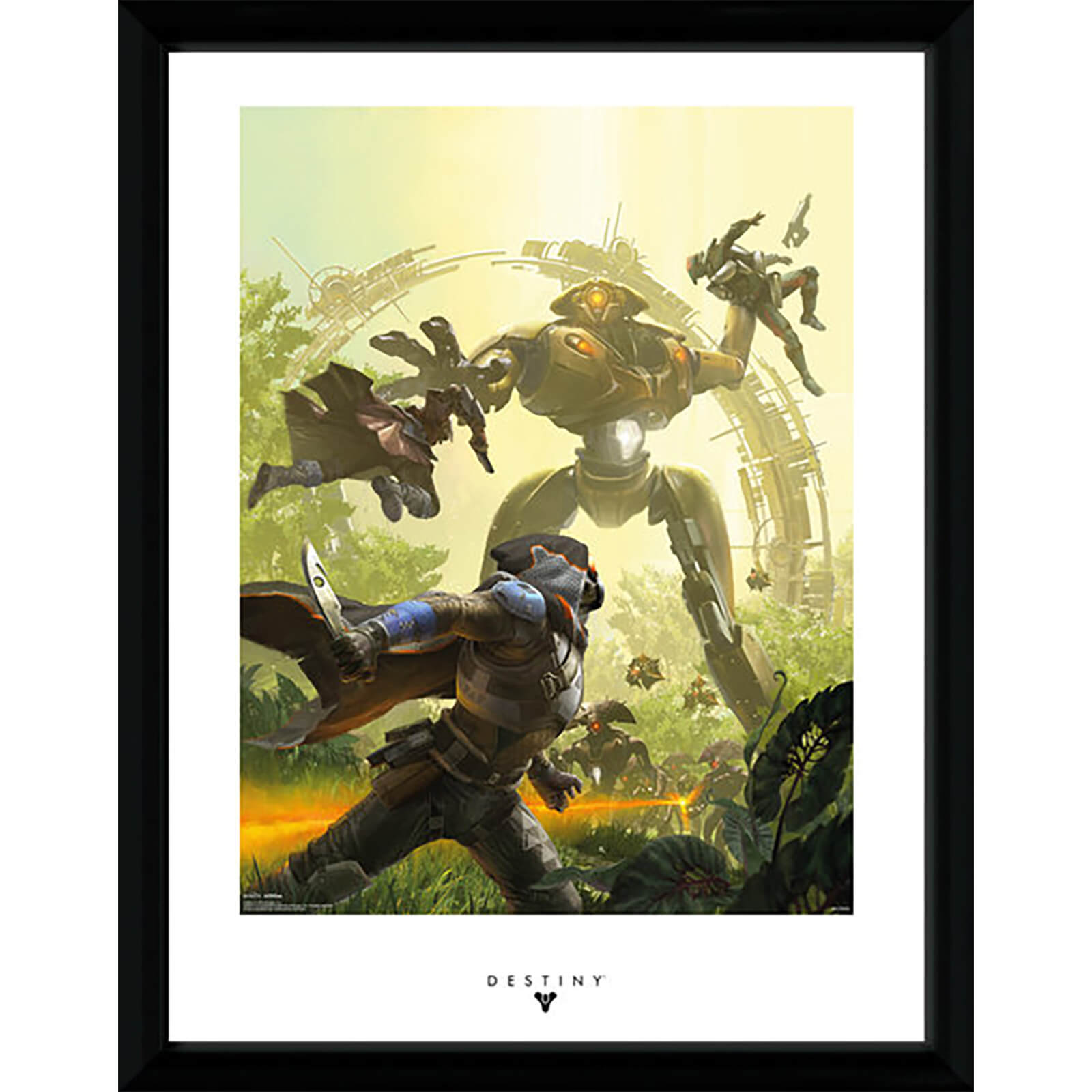 Destiny Vex - 16 x 12 Inches Framed Photograph