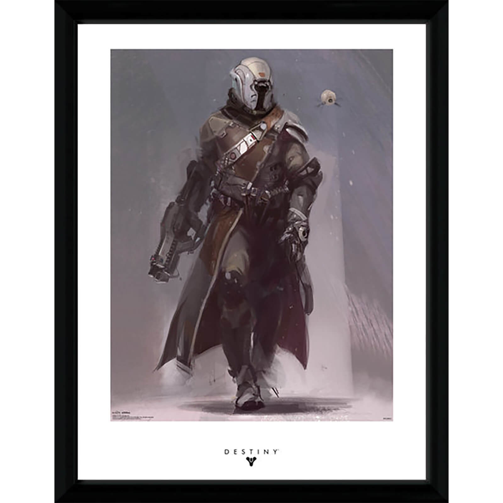 Destiny Warlock - 16 x 12 Inches Framed Photograph