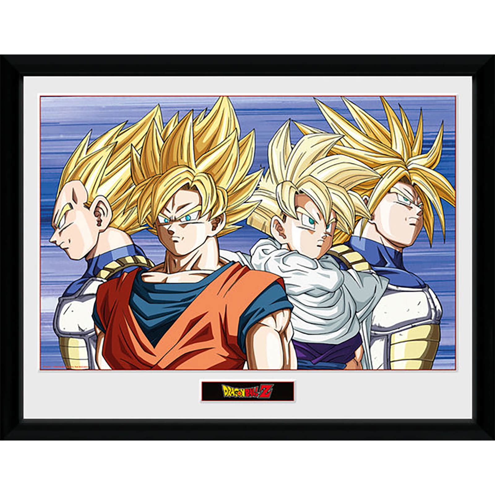 Dragon Ball Z Group - 16 x 12 Inches Framed Photograph