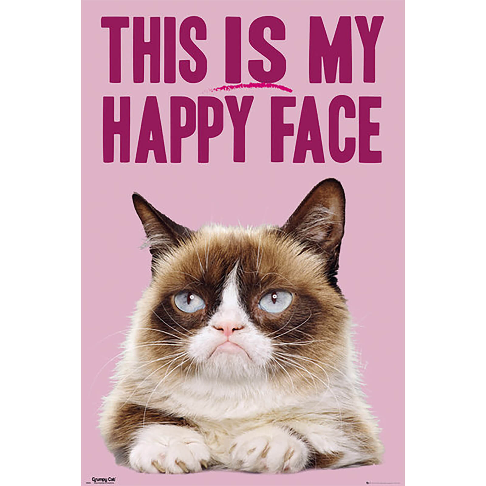 Grumpy Cat Happy Face - 61 x 91.5cm Maxi Poster