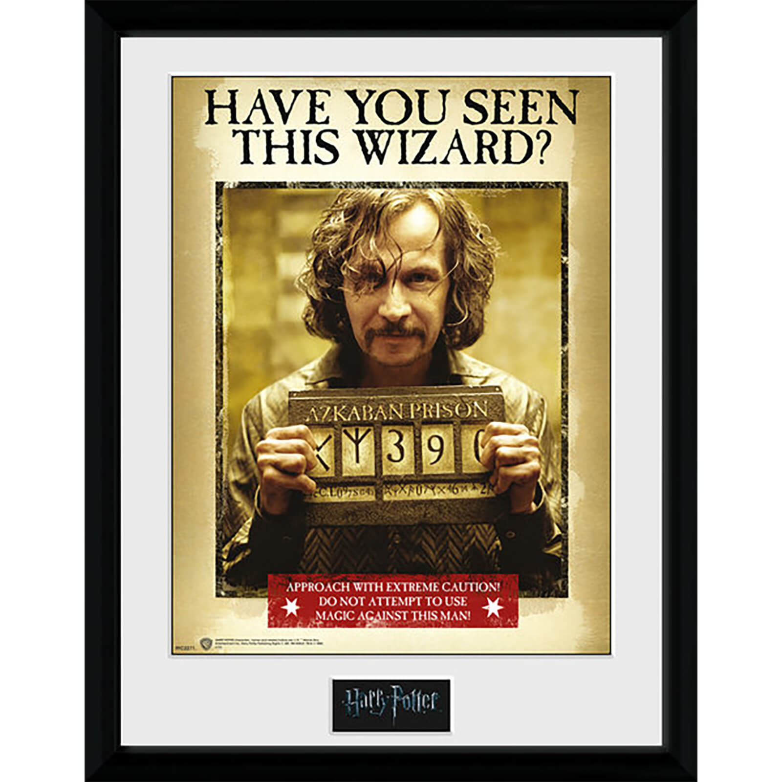 Harry Potter Sirius Azkaban - 16 x 12 Inches Framed Photograph