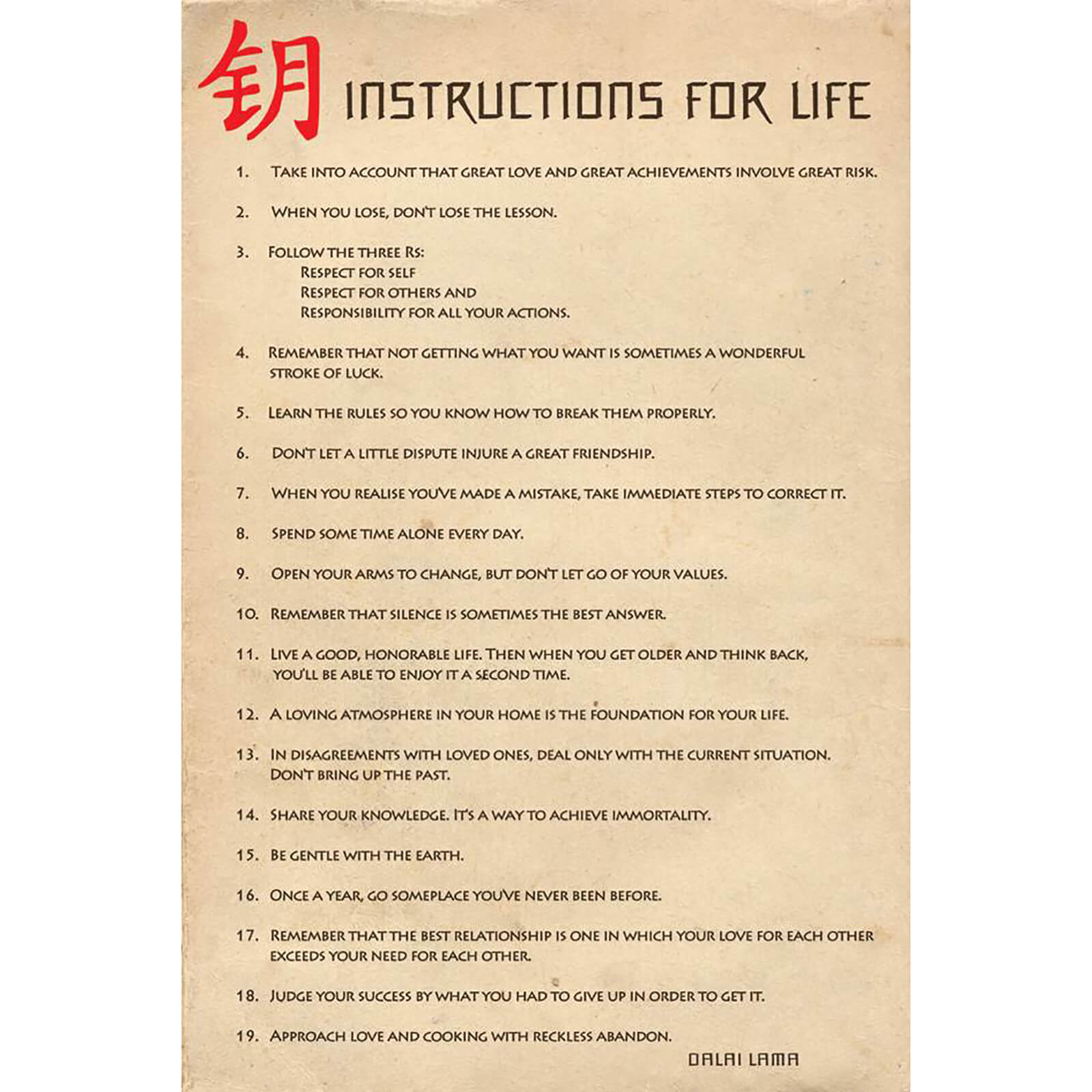 Instructions for Life - 61 x 91.5cm Maxi Poster