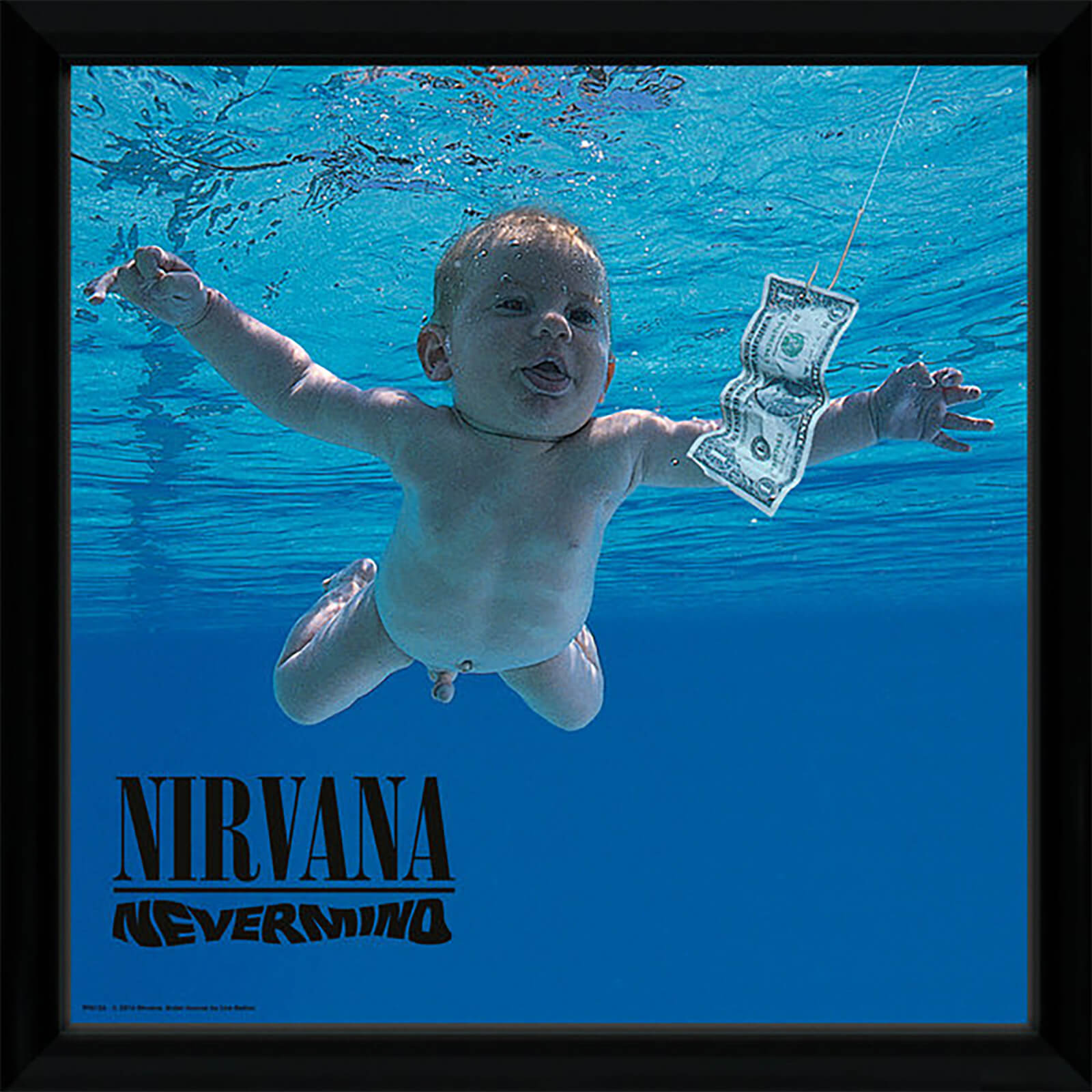 Nirvana Nevermind - 10 x 8 Inches Bagged Photograph