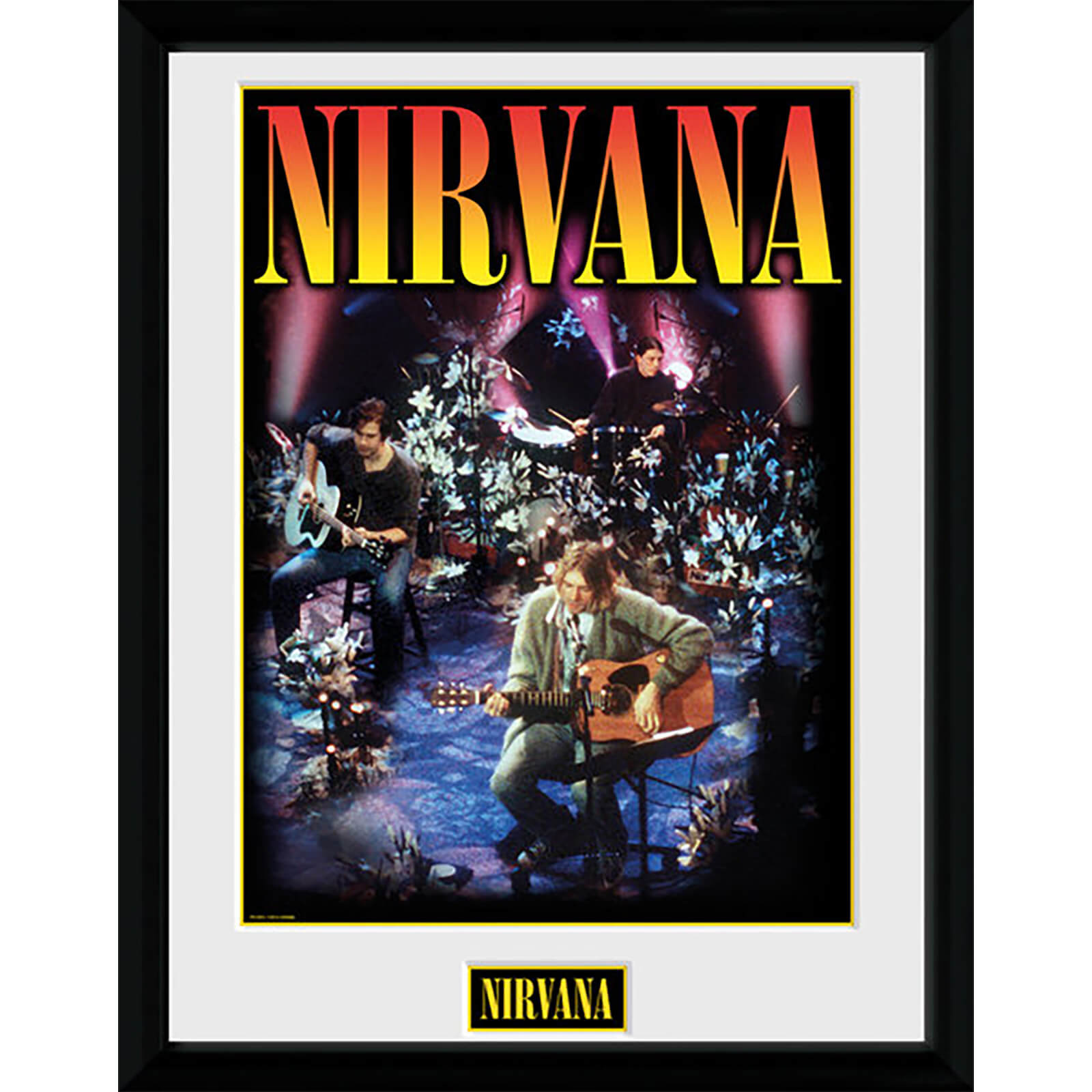 Nirvana Unplugged - 16 x 12 Inches Framed Photograph