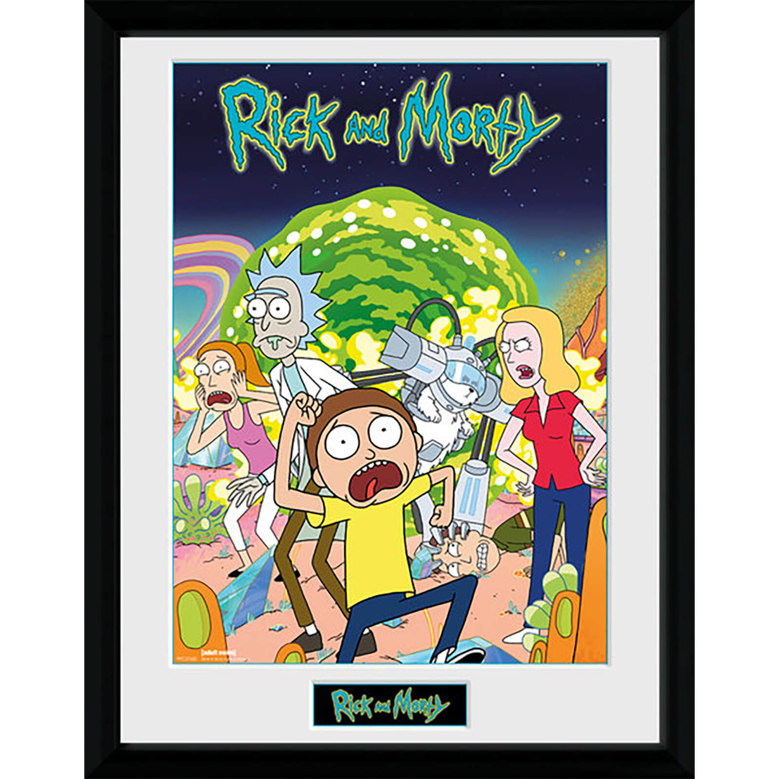 Rick and Morty Compilation - 16 x 12 Inches Framed Photograph