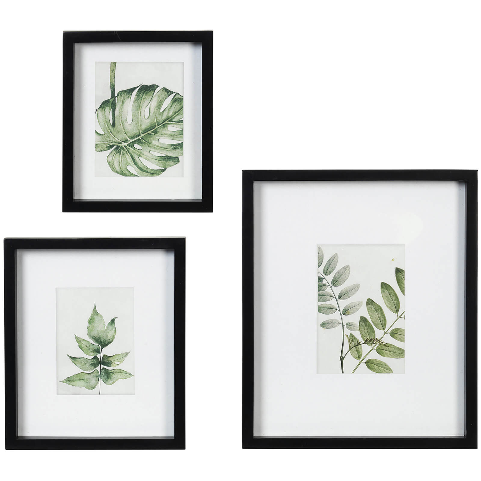Broste Copenhagen Leo Wall Art - Fir Wood (Set of 3)