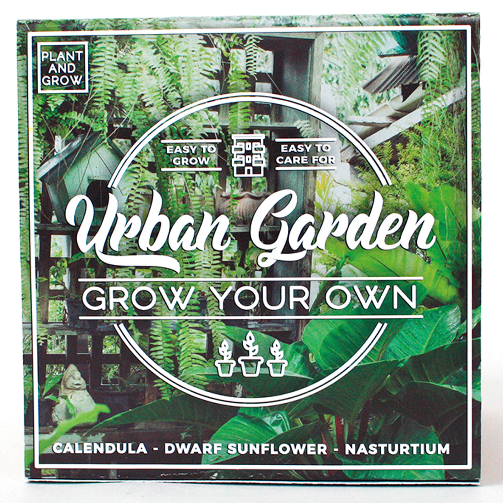 Grown Your Own Urban Garden