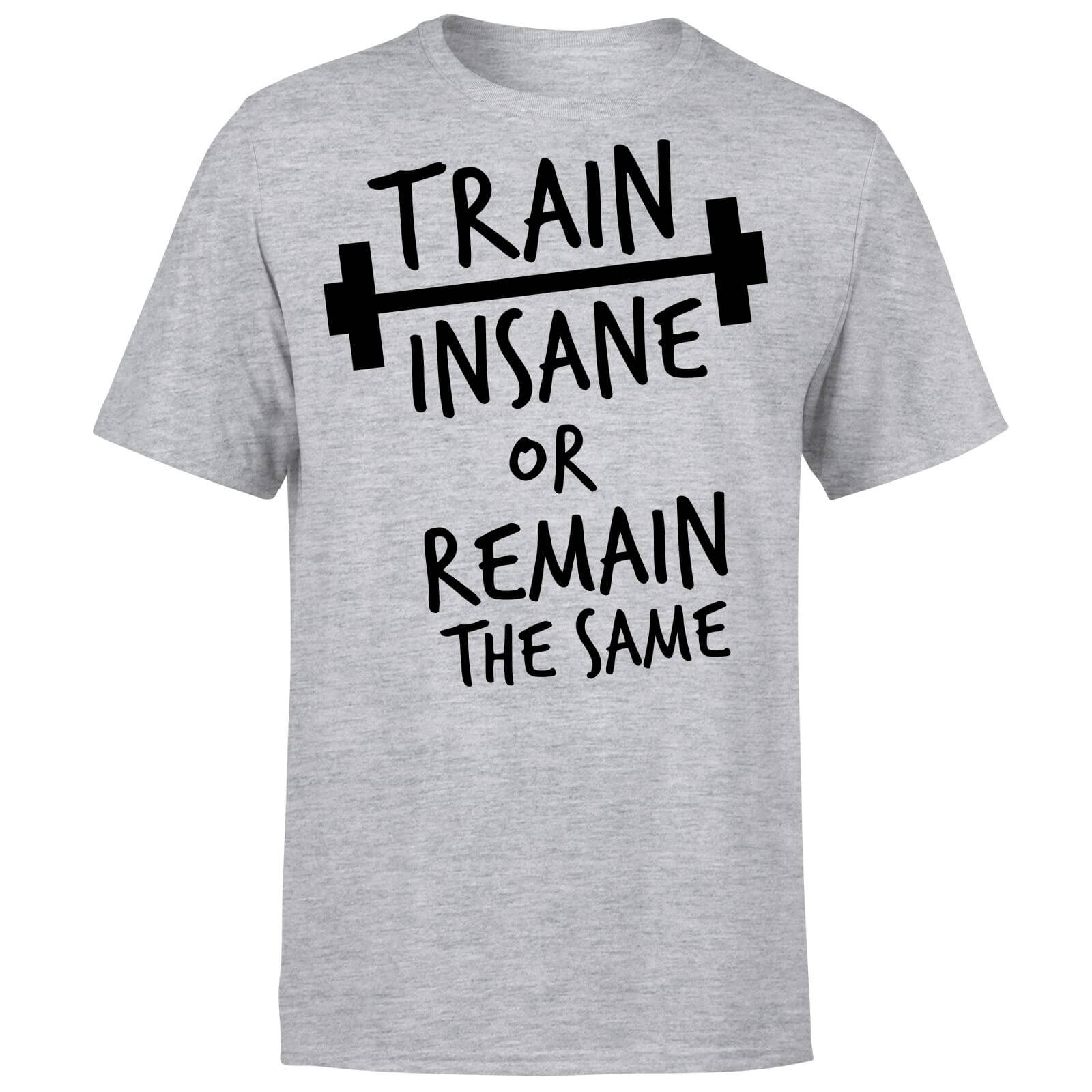 Train Insane or Remain the Same T-Shirt - Grey