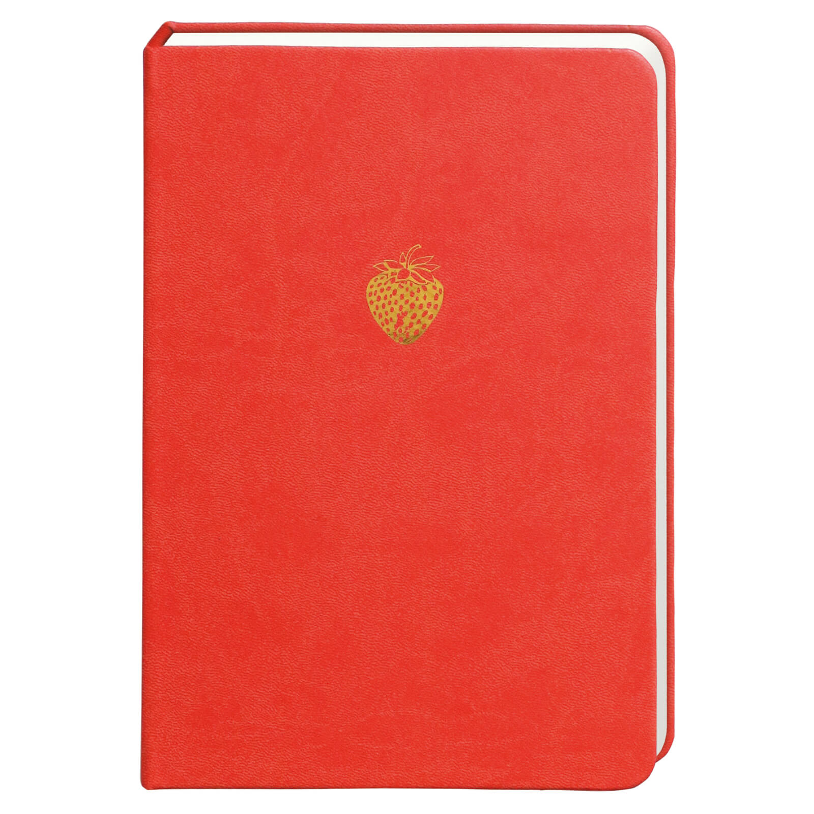 Sky + Miller Strawberry Notebook - Coral