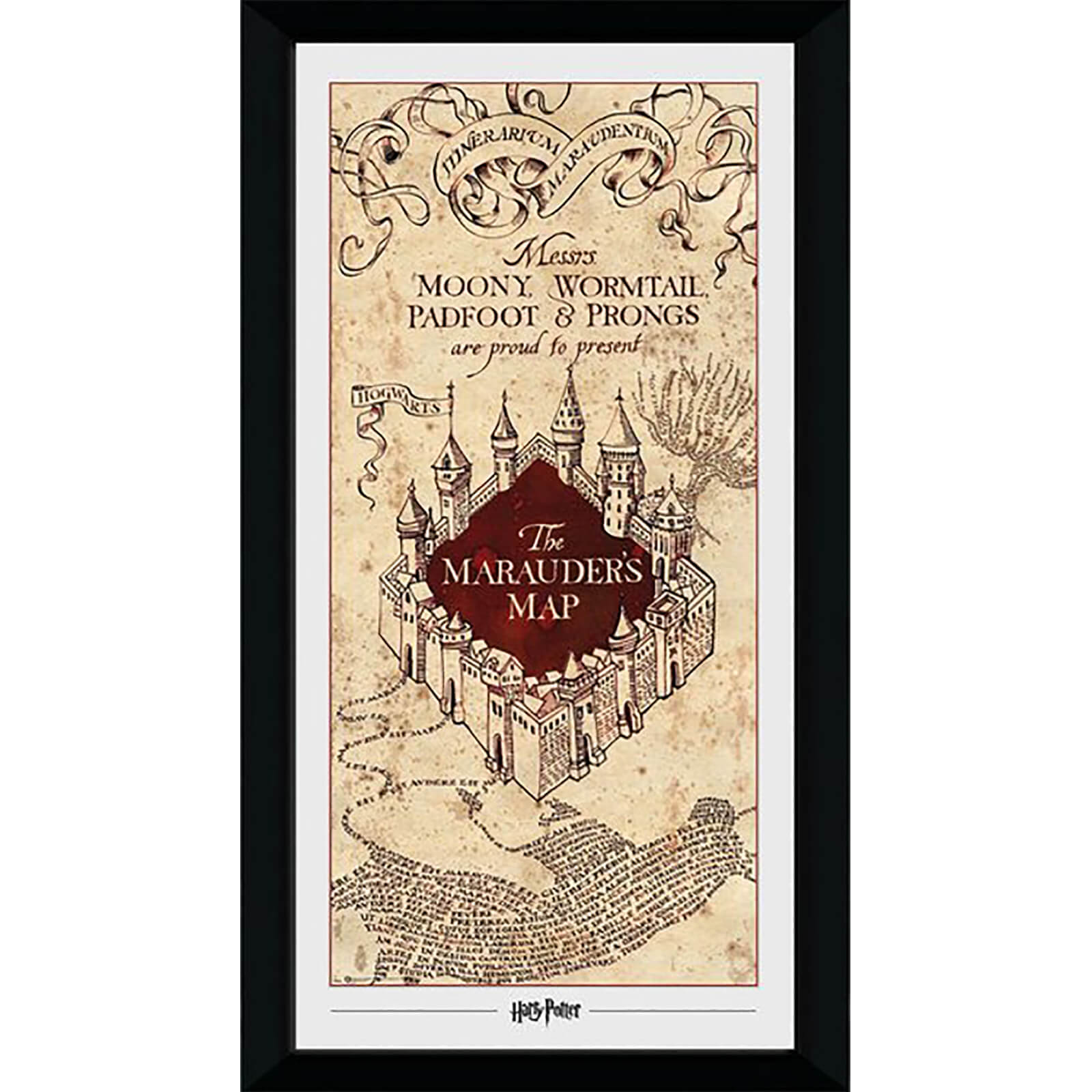 Harry Potter Marauders Map Collector