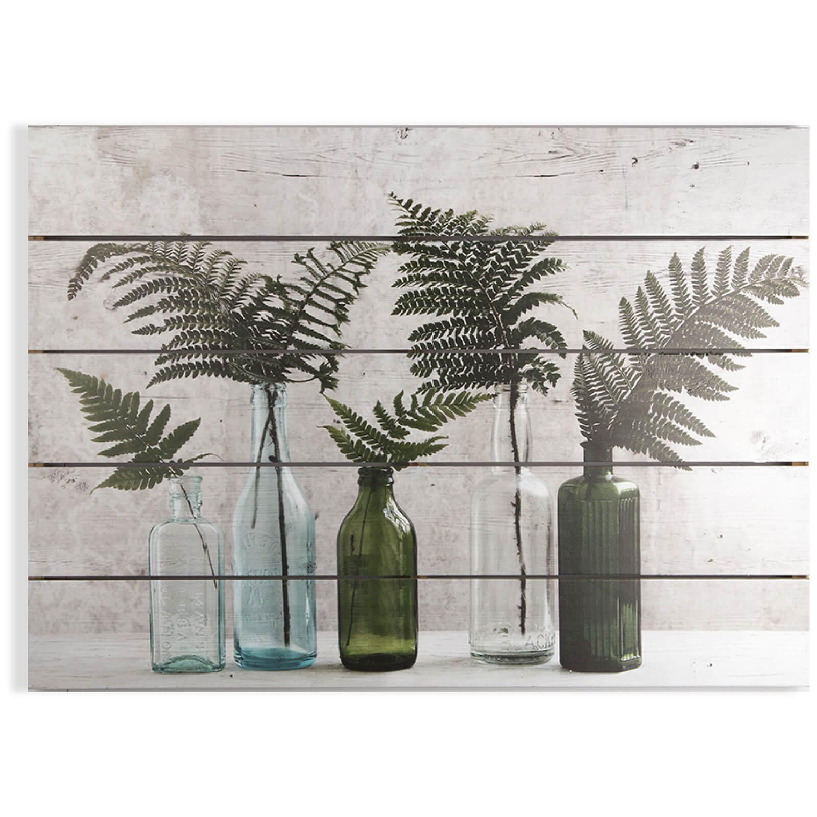 Art for the Home Botanical Bottles Print on Wood