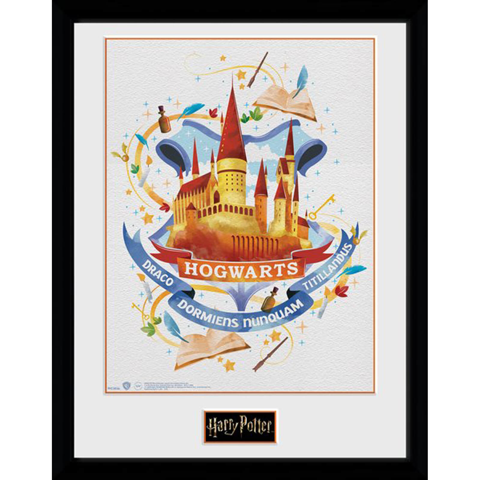 Harry Potter Hogwarts Paint 12 x 16 Inches Framed Photograph