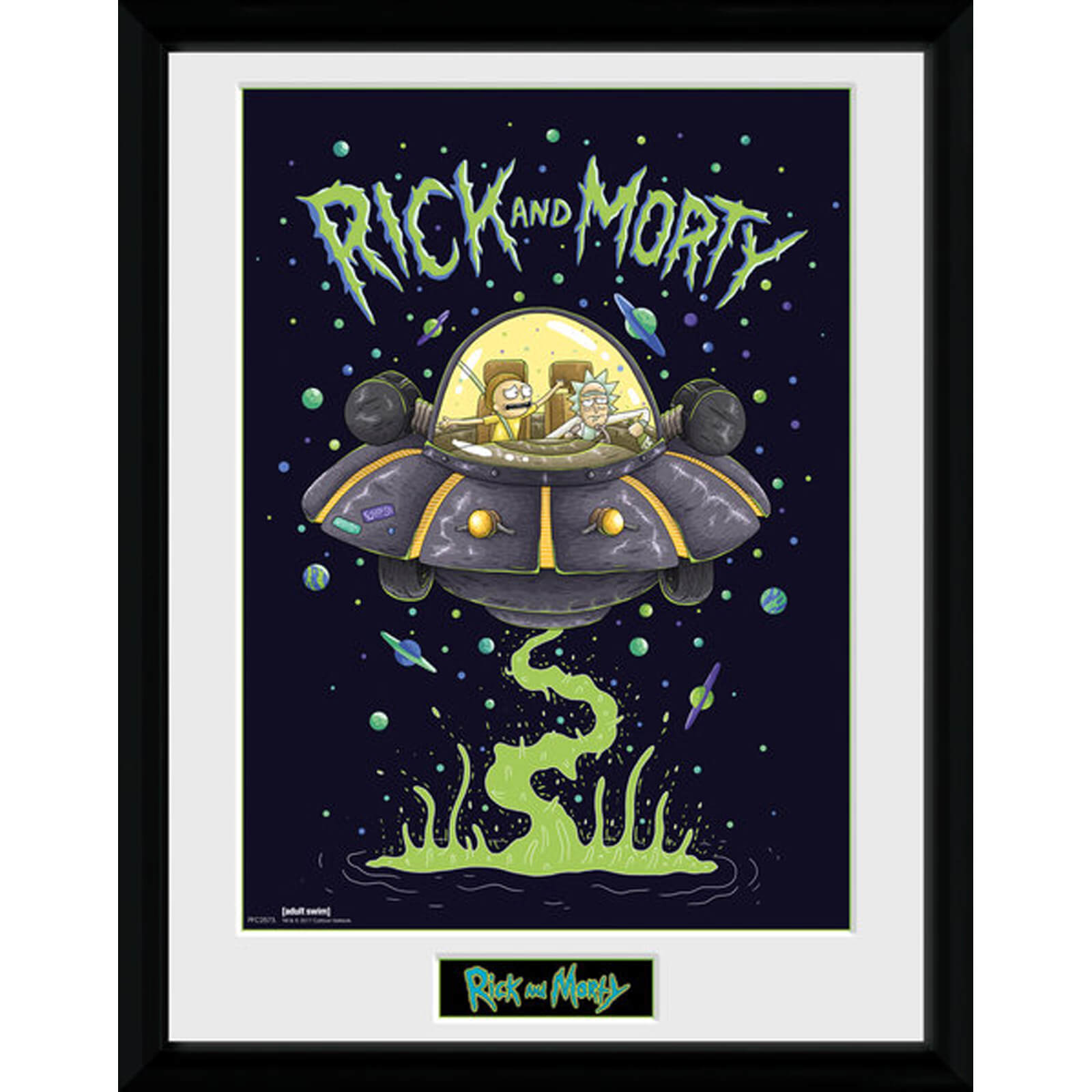 Rick and Morty Ship 12 x 16 Inches Framed Photograph