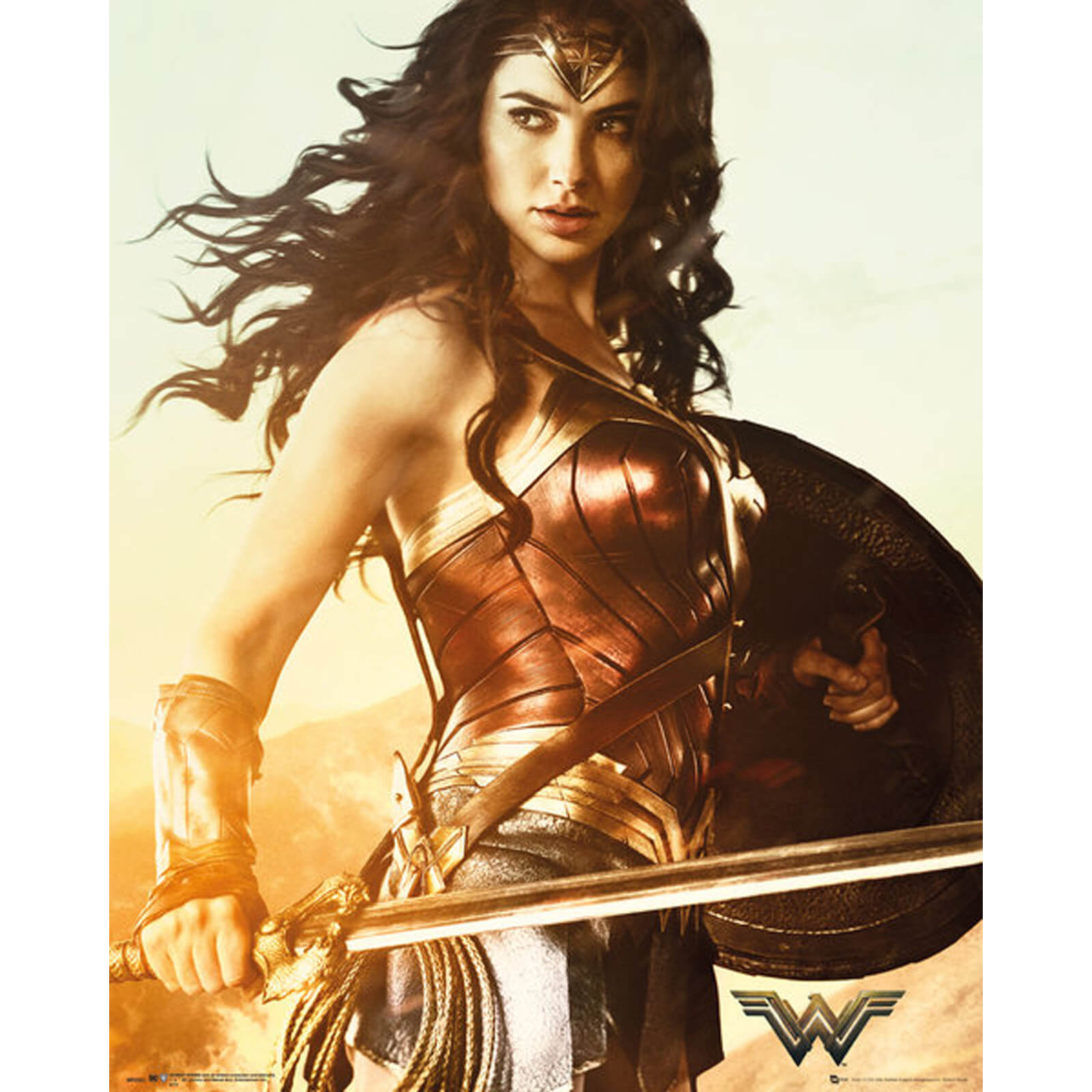 DC Comics Wonder Woman Sword Mini Poster 40 x 50cm
