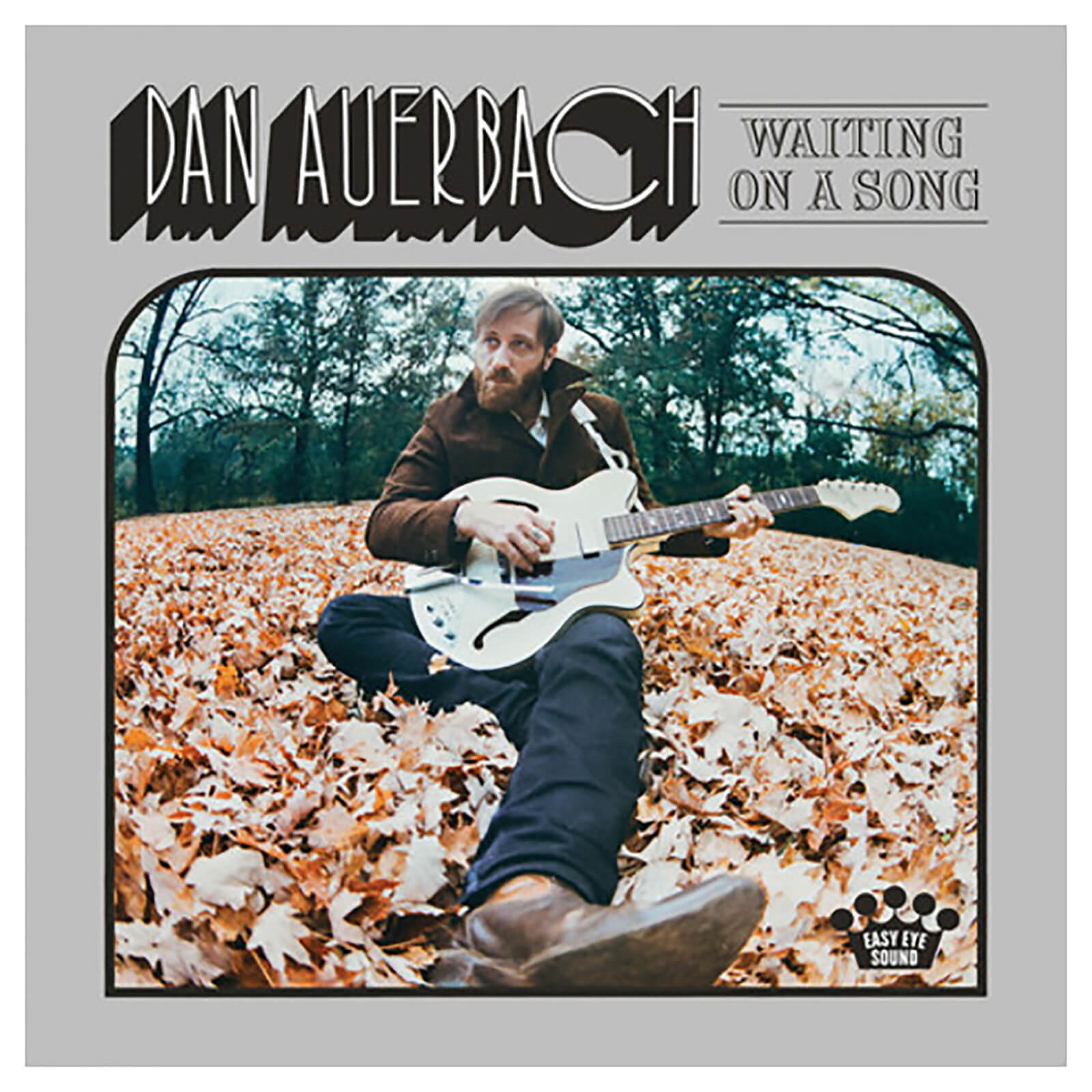 Dan Auerbach - Waiting On A Song - Vinyl