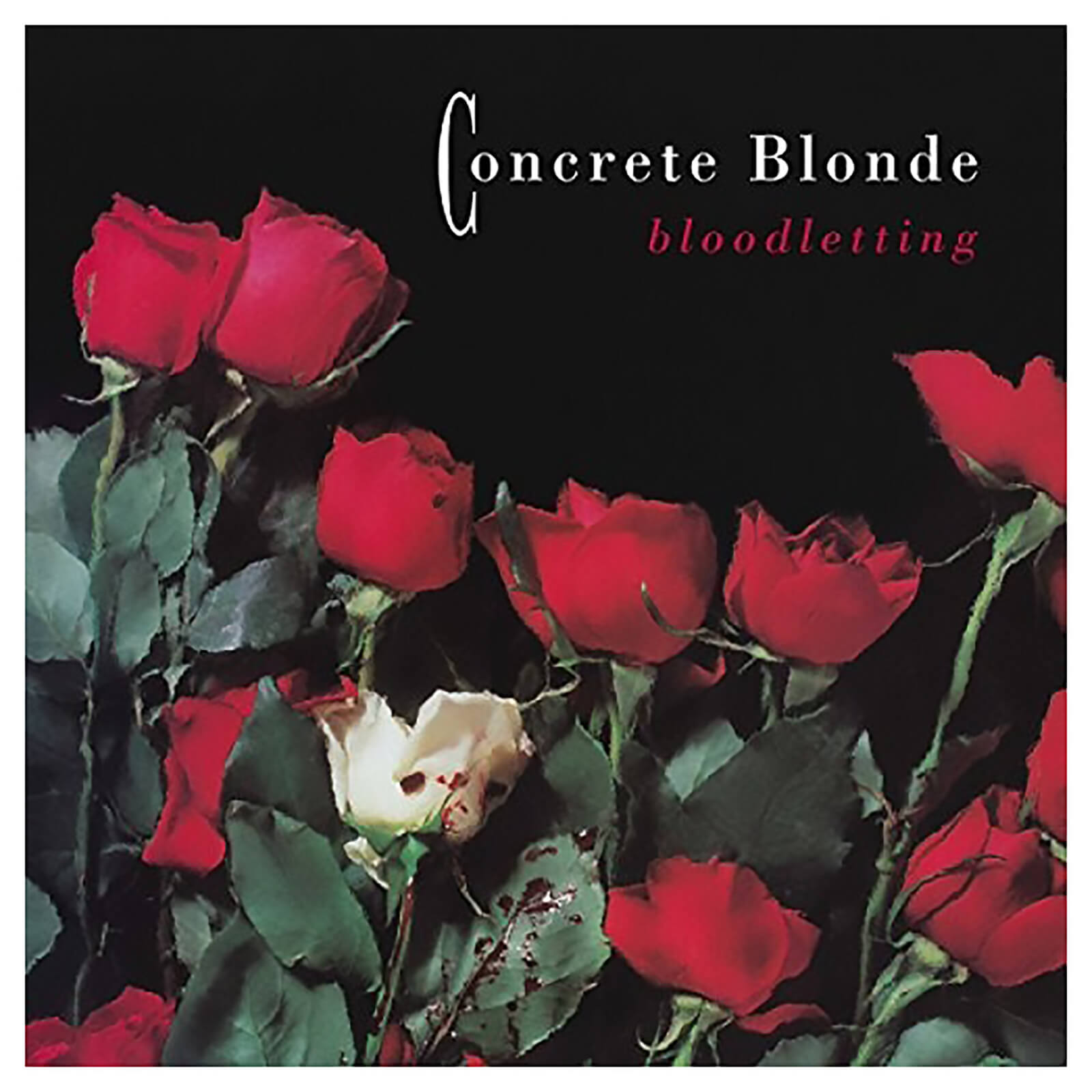 Concrete Blonde - Bloodletting - Vinyl