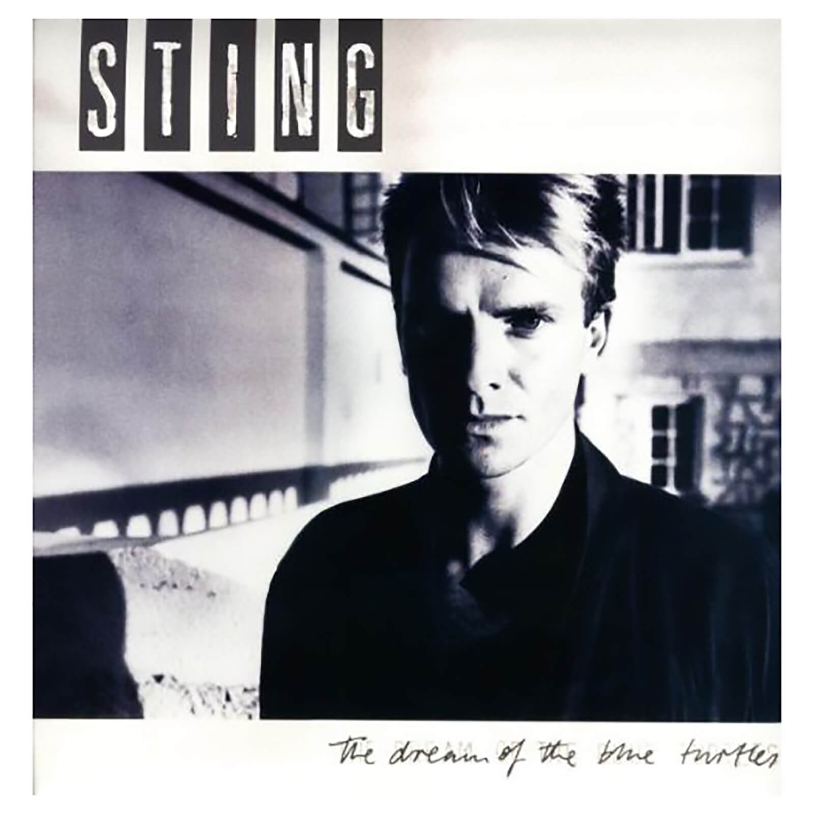 Sting - Dream Of The Blue Turtles - Vinyl