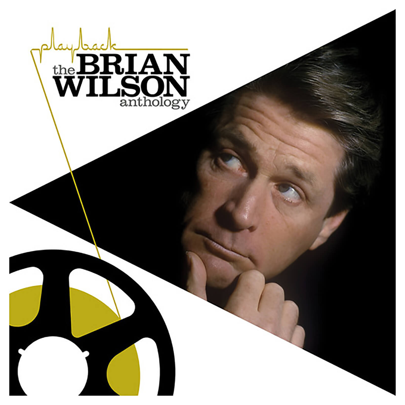 Brian Wilson - Playback: Brian Wilson Anthology - Vinyl