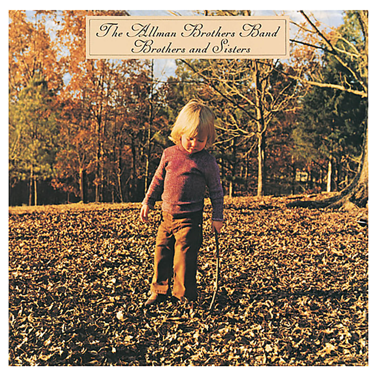 Allman Brothers - Brothers & Sisters - Vinyl