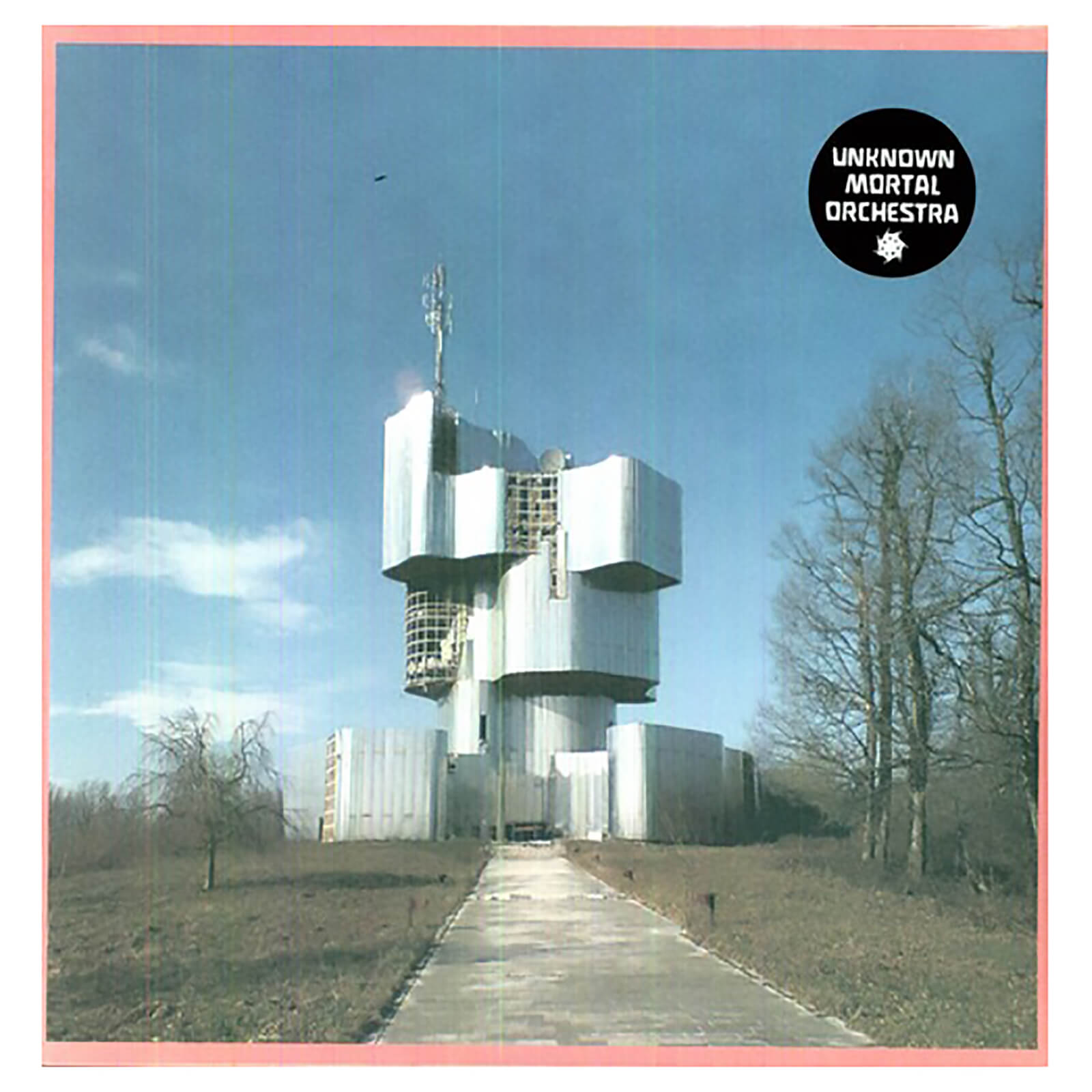Unknown Mortal Orchestra - Vinyl
