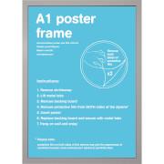 Silver Frame A1