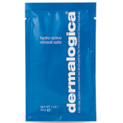 Dermalogica Hydro Active Mineral Salts