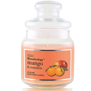 Baylis & Harding Beauticology Mango and Mandarin Single Wick Jar Candle