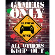 Gamers Only Controller Keep Out - 16 x 20 Inches Mini Poster