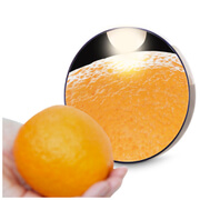 Rio 10 X Magnification Mirror with Light