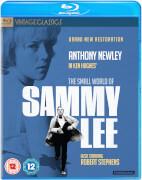 The Small World Of Sammy Lee(Digitally Restored)