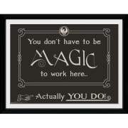 Fantastic Beasts Magic Framed Album Cover - 12