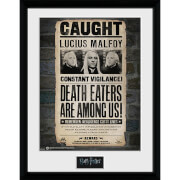 Harry Potter Lucius - 16 x 12 Inches Framed Photograph