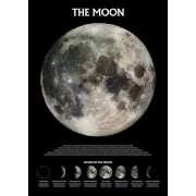 The Moon - 61 x 91.5cm Maxi Poster