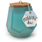 Paddywax Prism 2.5oz - Morning Dew