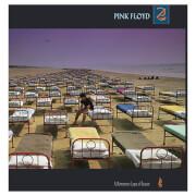 Momentary Lapse Of Reason Vinyl