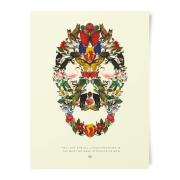 Natural History Museum Skull Of Wildlife Art Print