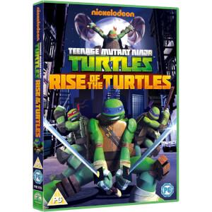Teenage Mutant Ninja Turtles: Rise of the Turtles - Season 1 Volume 1