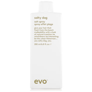 Текстурирующий спрей Evo Salty Dog Beach Cocktail Spray (200 мл)