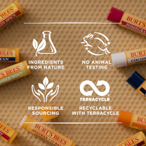 Burt's Bees 100% Natural Moisturising Lip Balm with Coconut and Pear: Image 6