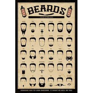Beards The Art Of Manliness - 24 x 36 Inches Maxi Poster